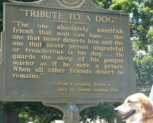 Vest's Dog plaque